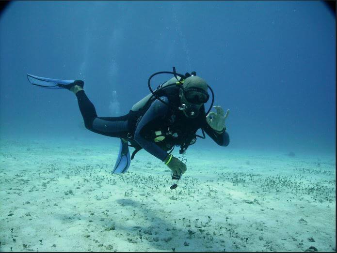 Mesoamerican-Coral-reef-Ocean-Scuba-Diving-14