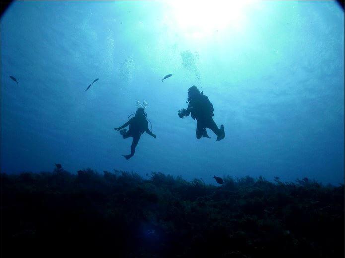 Mesoamerican-Coral-reef-Ocean-Scuba-Diving-4