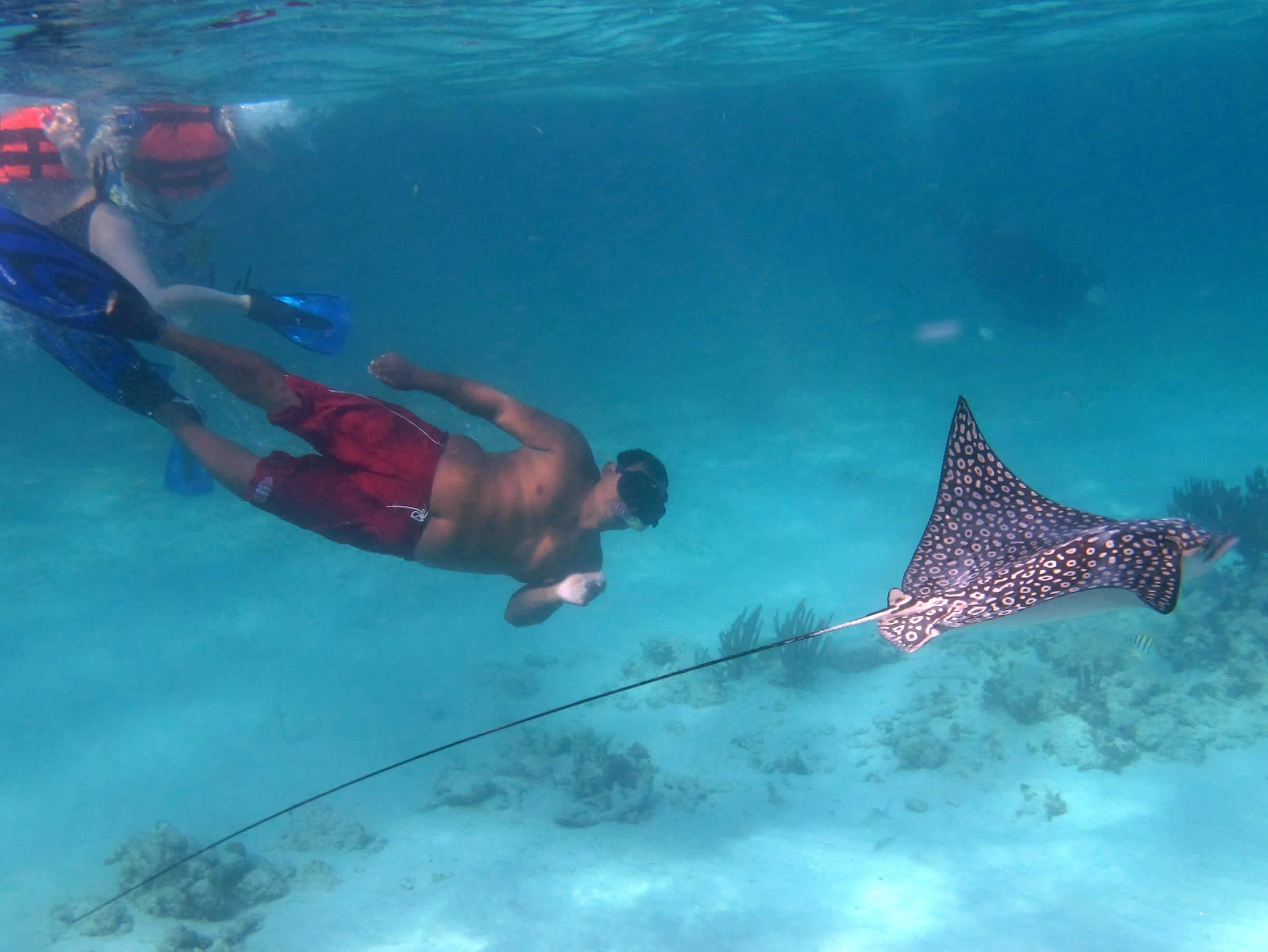 Riviera-Maya-Snorkeling-8