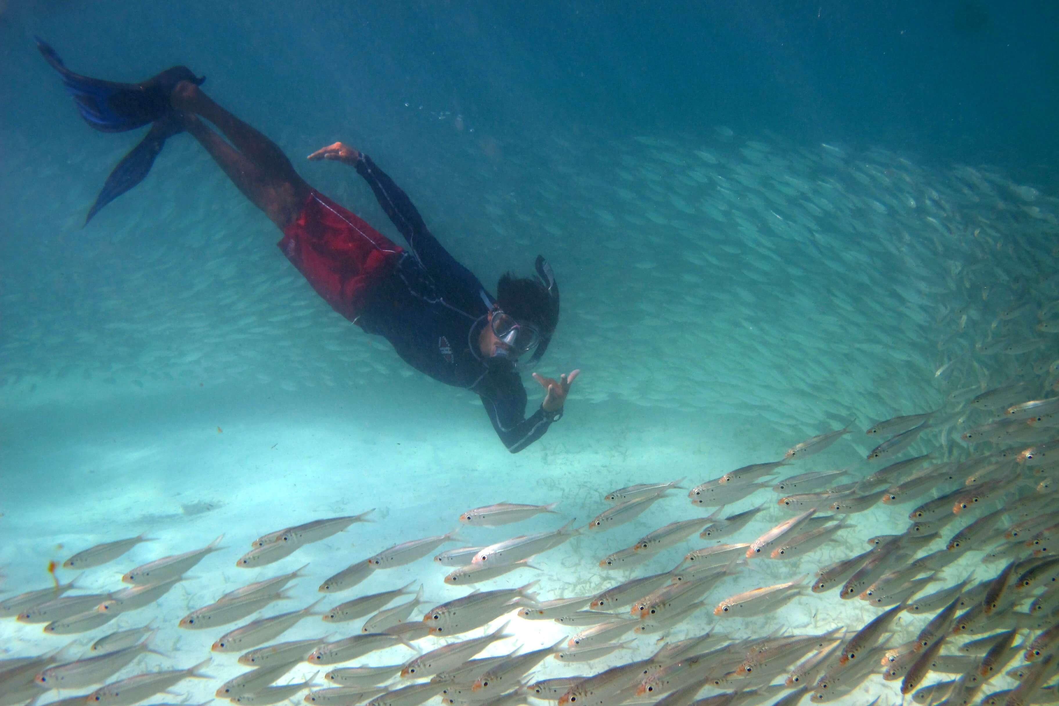 Riviera-Maya-Snorkeling-9