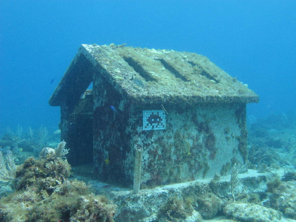 Scuba-Diving-Isla-Mujeres-MUSA-CareyDiveCenter-12