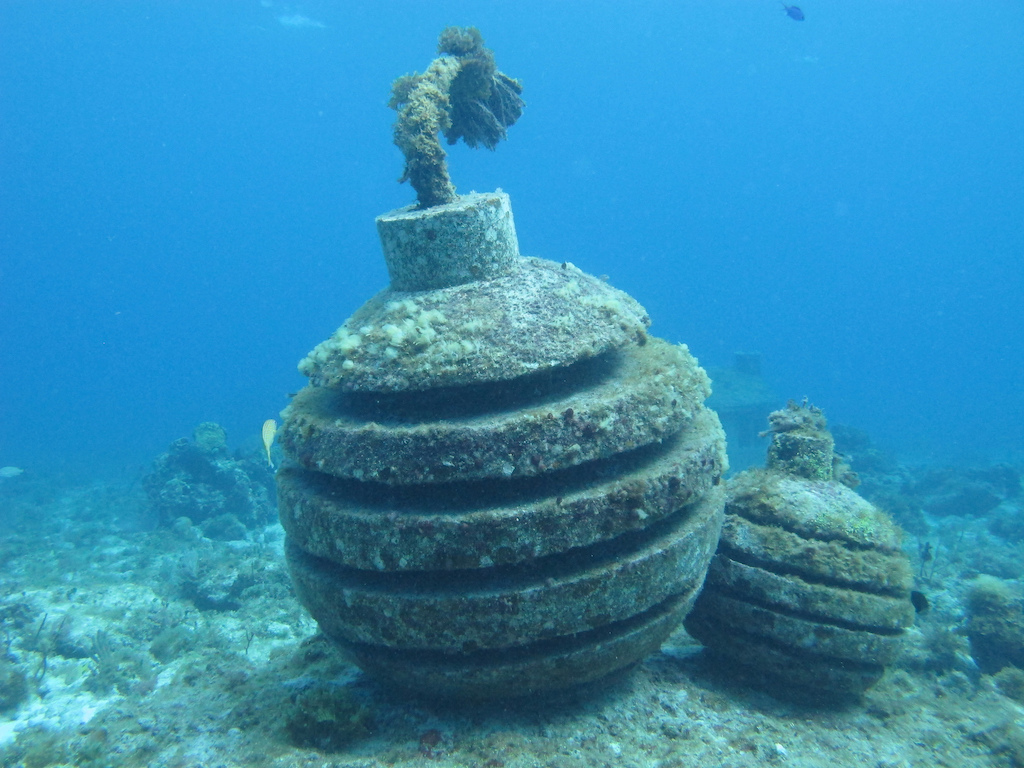 Scuba-Diving-Isla-Mujeres-MUSA-CareyDiveCenter-13