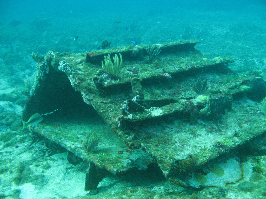 Scuba-Diving-Isla-Mujeres-MUSA-CareyDiveCenter-2