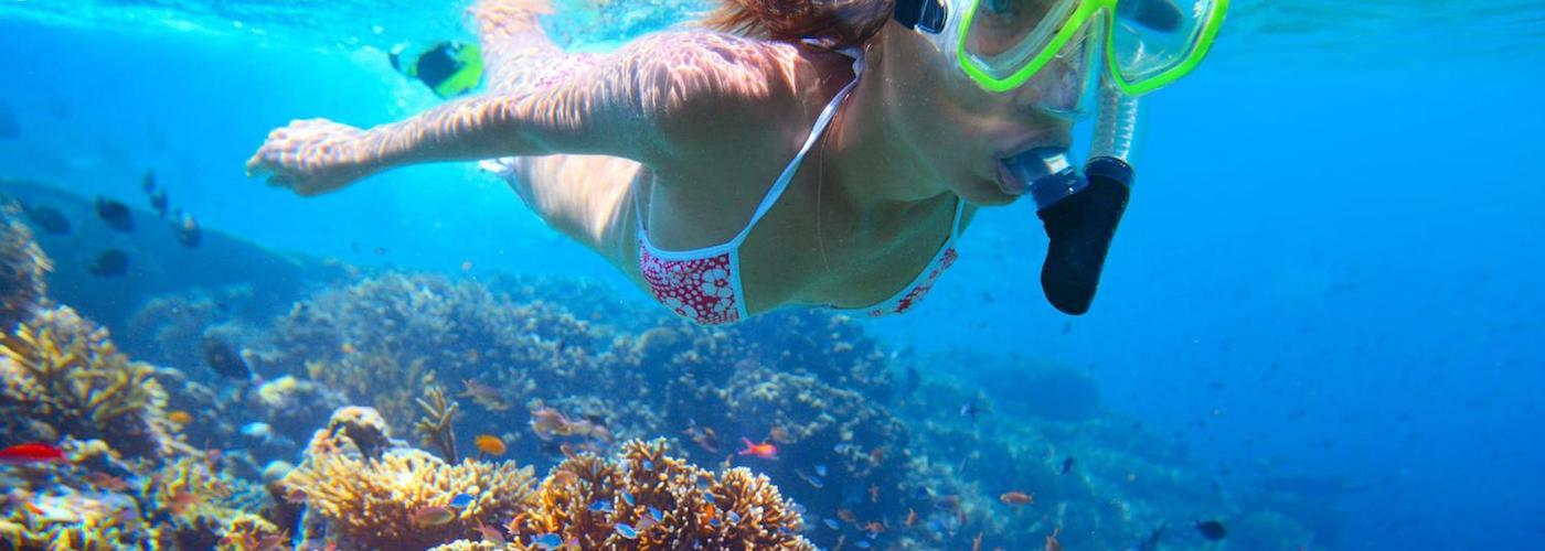 Snorkel Adventures