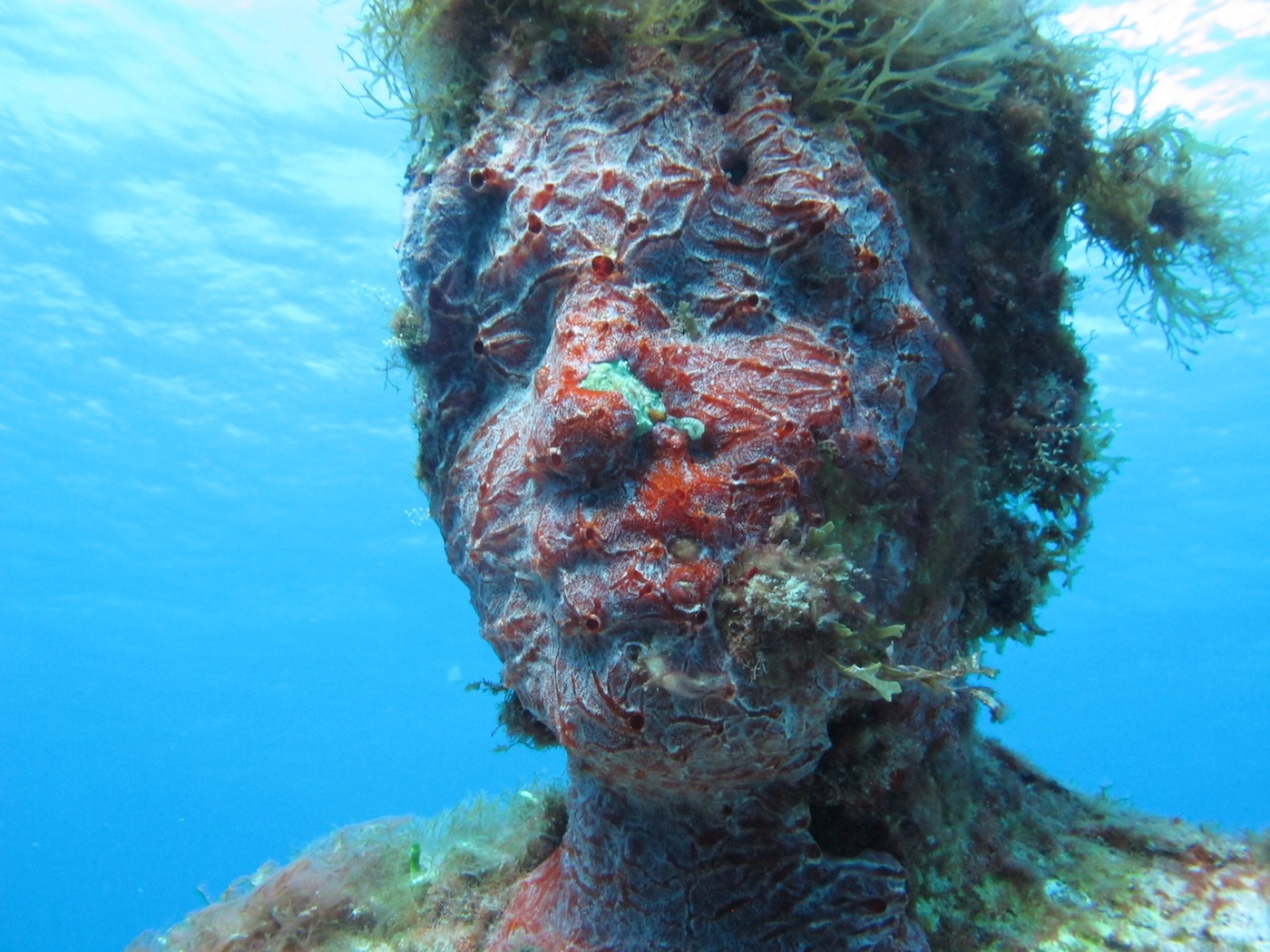 MUSA-Underwater-Museum-Snorkeling-Scuba-Diving-Tours-Isla-Mujeres-Carey-Dive-Center-15