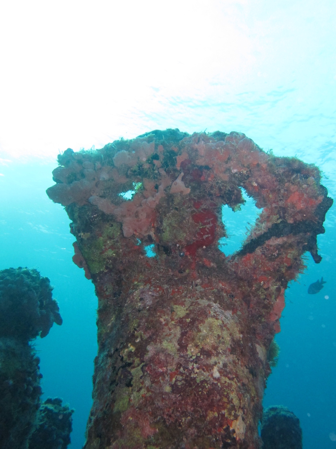 MUSA-Underwater-Museum-Snorkeling-Scuba-Diving-Tours-Isla-Mujeres-Carey-Dive-Center-9