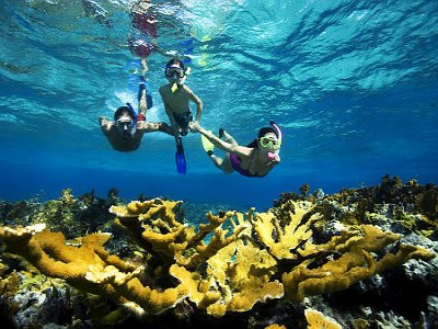 Snorkel-Tour-Isla-Mujeres-Carey-Dive-Center-6