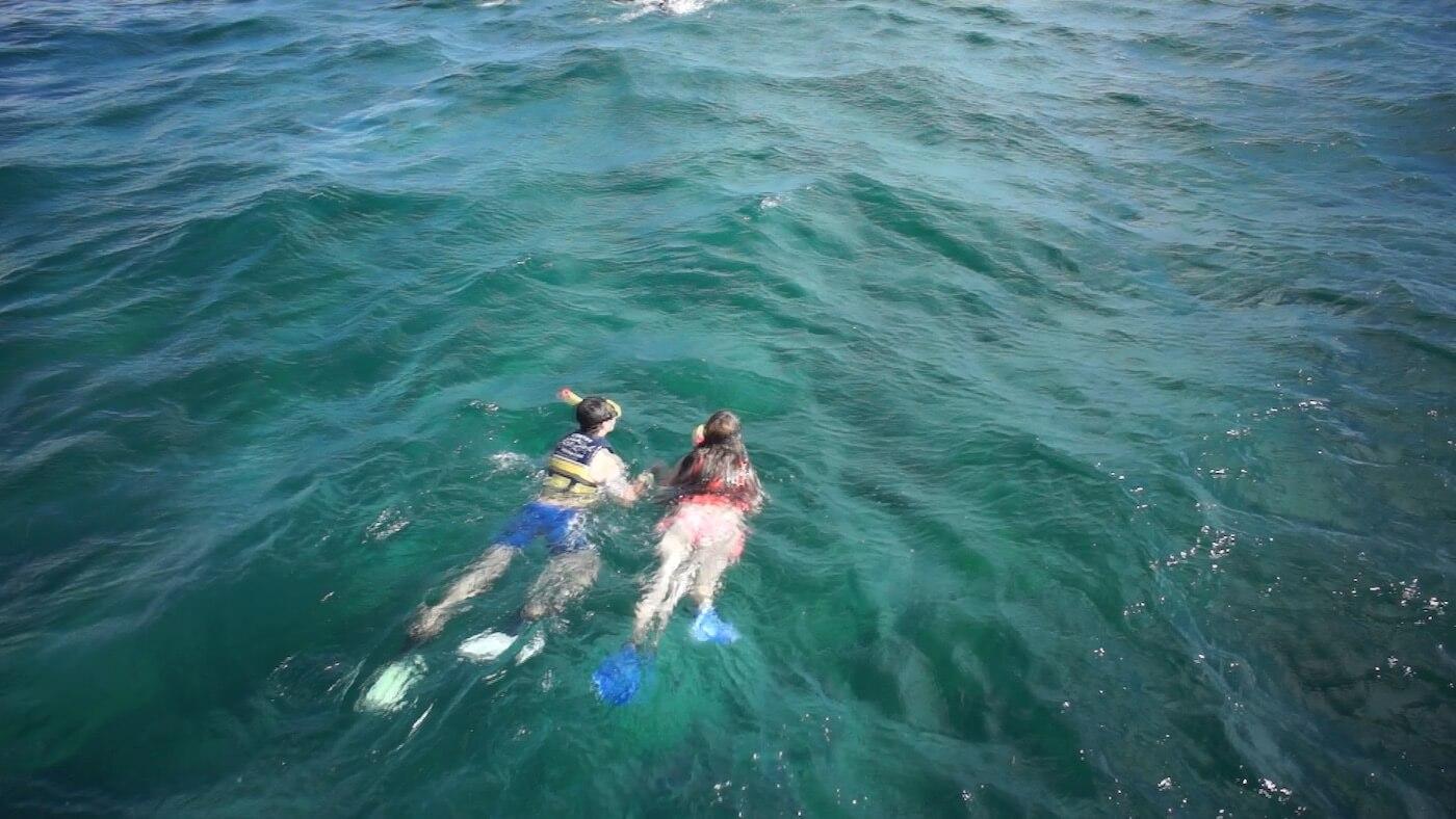 Whale-Shark-Tours-Snorkel-Cancun-Isla-Mujeres-Riviera-Maya-6