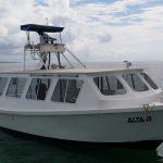 Cancun Scuba Diving - Altair - Caribbean Connection -5