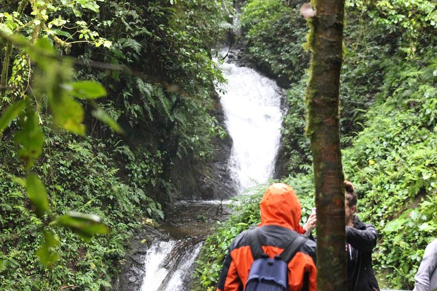 Monteverde Carrillo Adventures