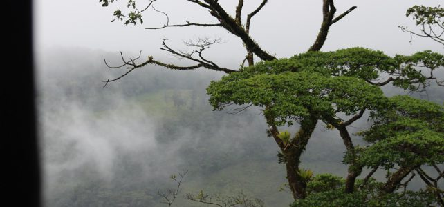Monteverde Cloud Forest Adventure Reserve