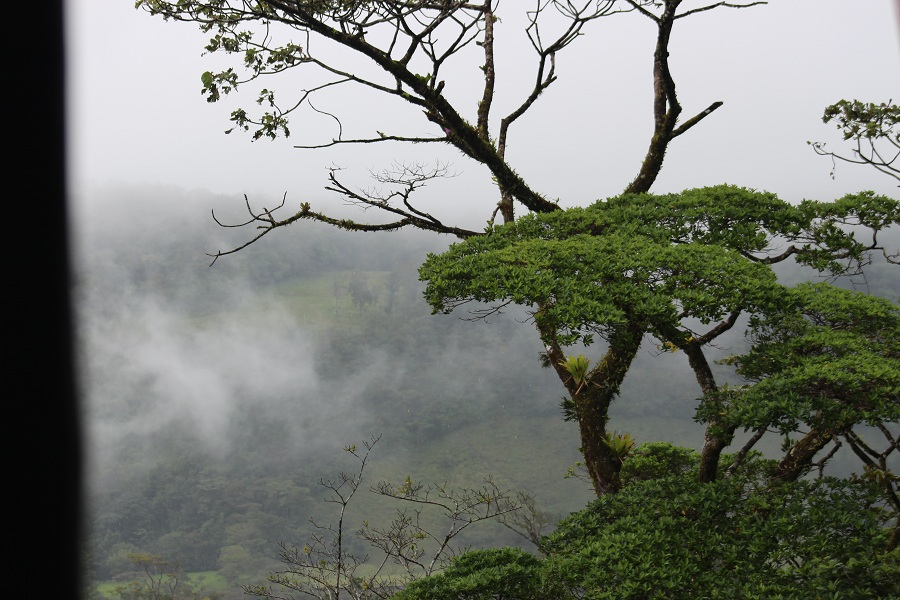 Monteverde Carrillo Adventures3