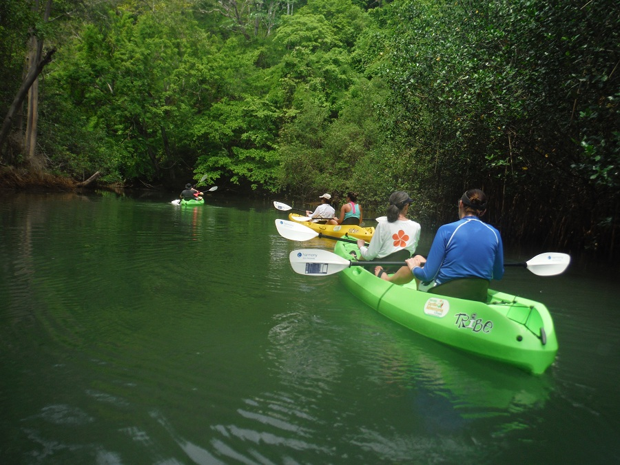 River Kayak Carrillo Adventures2