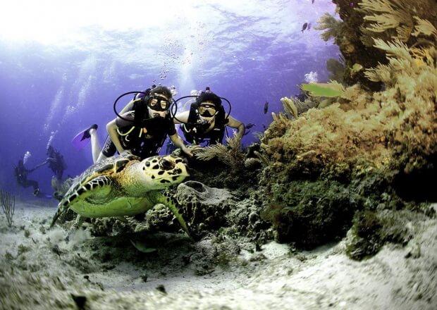 Cancun-Scuba-Diving-Dive-Trip-MUSA-Manchones-Reef-5