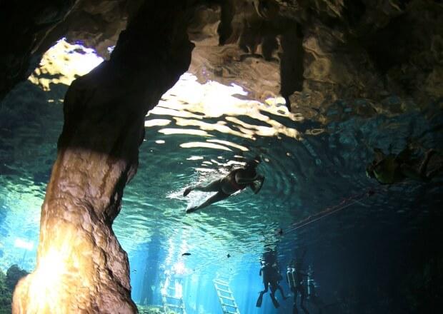 Cenote-Scuba-Diving-Dive-Cancun-Riviera-Maya-4