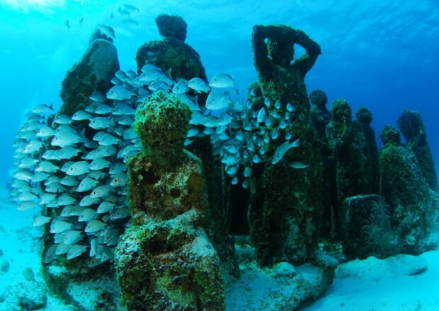 MUSA-Snorkeling-Tour-Cancun-Riviera-Maya-5