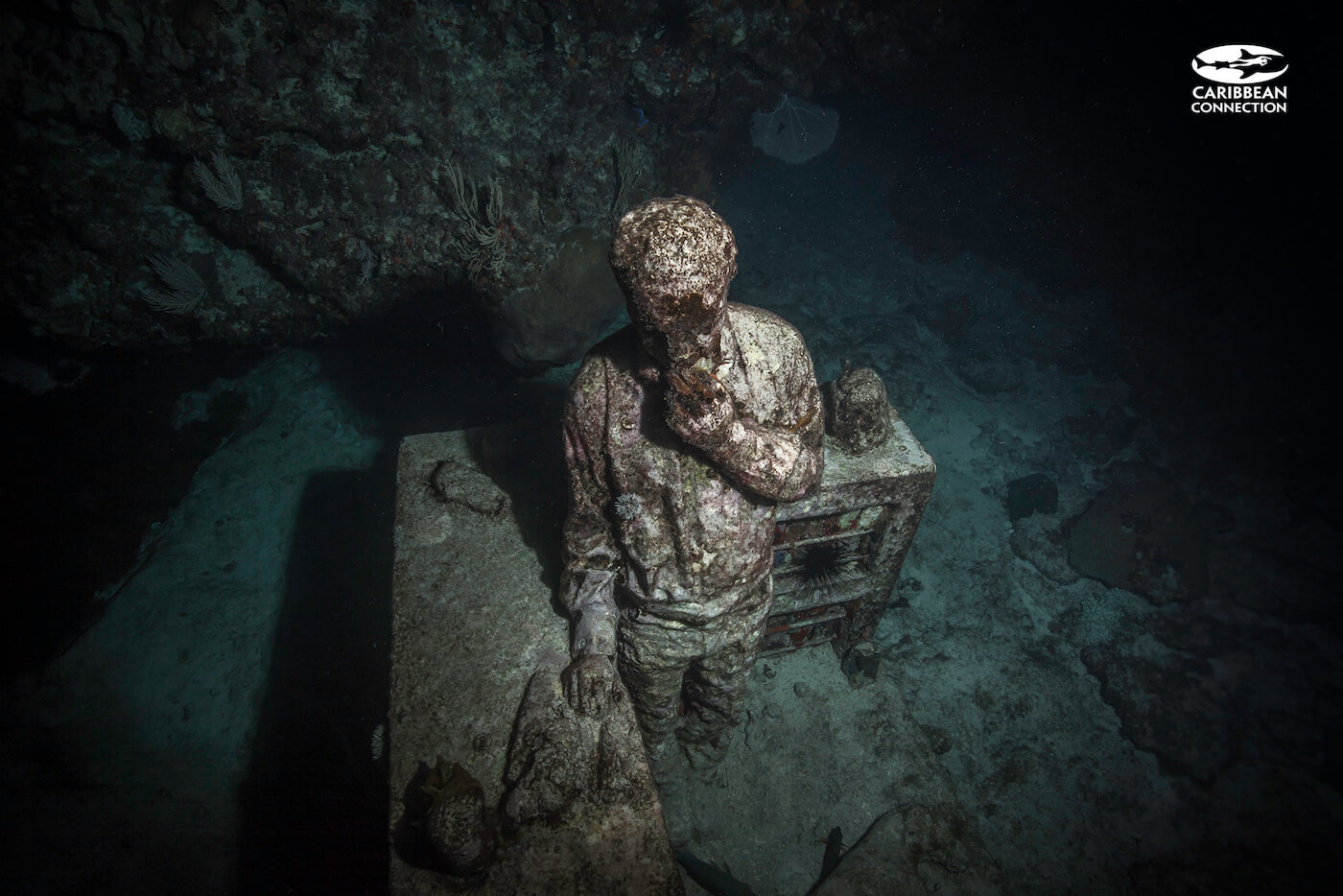 MUSA-Underwater-Museum-Cancun-Dive-Center-Caribbean-Connections-12