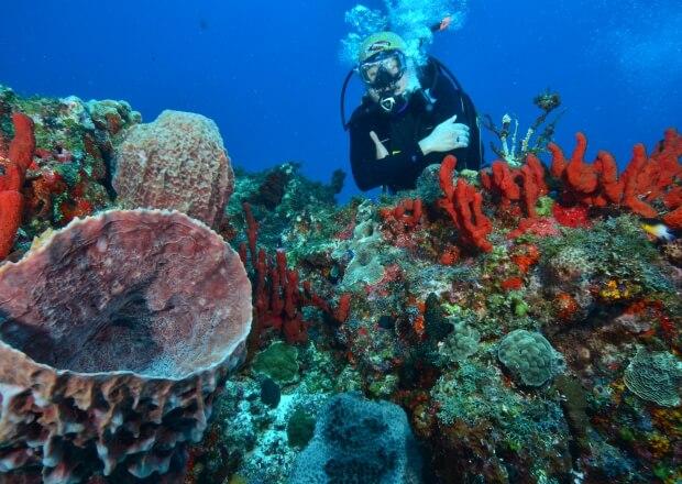PADI-Advanced-Scuba-Dive-Certification-Course-Cancun-Riviera-Maya-4
