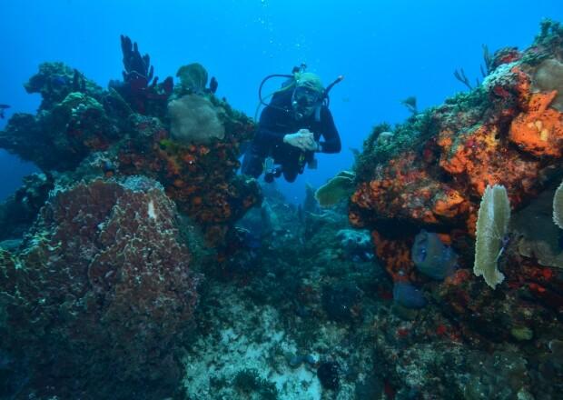 PADI-Advanced-Scuba-Dive-Certification-Course-Cancun-Riviera-Maya-5
