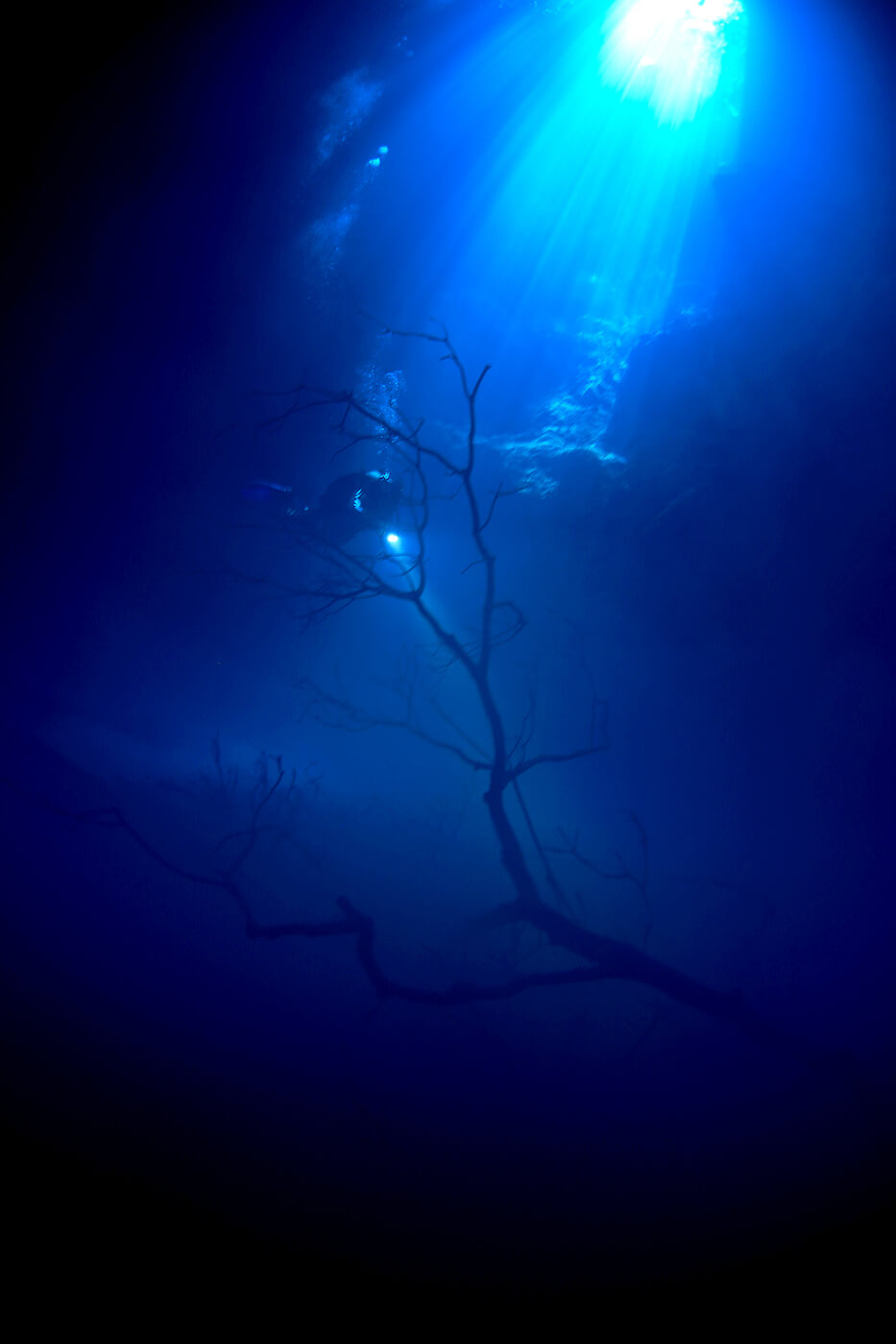 Pit Cenote 2