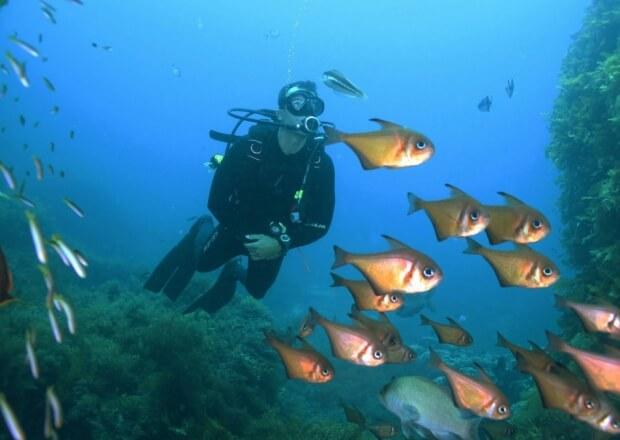 Scuba-Dive-Certification-Course-Cancun-Riviera-Maya-2