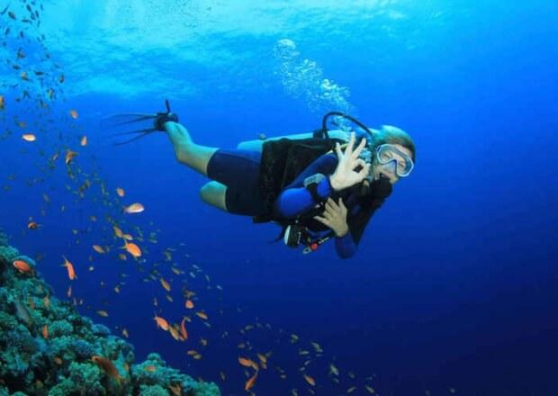 Scuba-Dive-Certification-Course-Cancun-Riviera-Maya-6