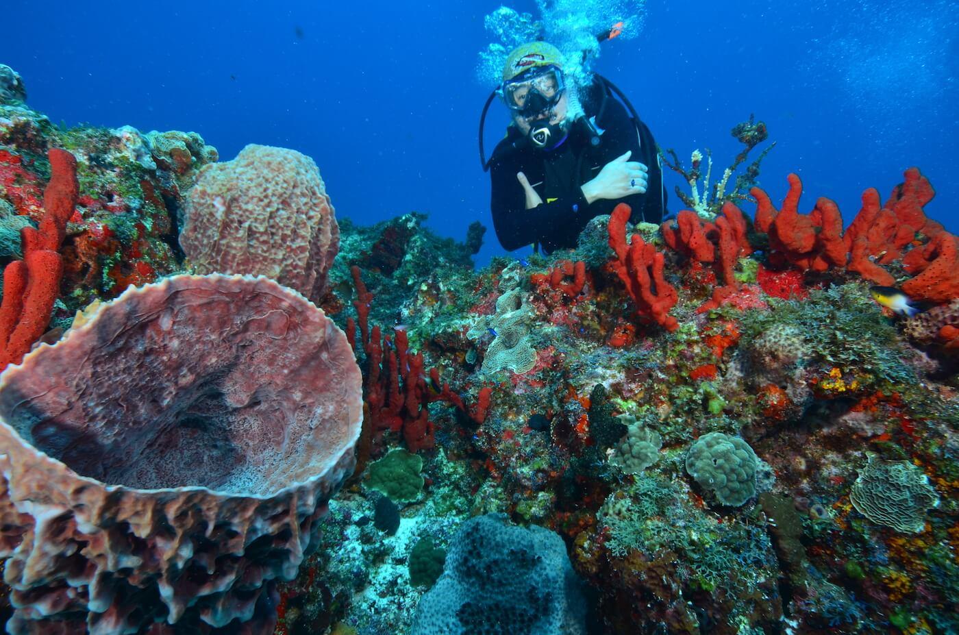 Scuba-Divers_Cancun-Dive-Center-Carbbean-Connection-10