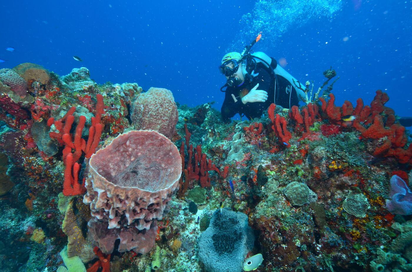 Scuba-Divers_Cancun-Dive-Center-Carbbean-Connection-13