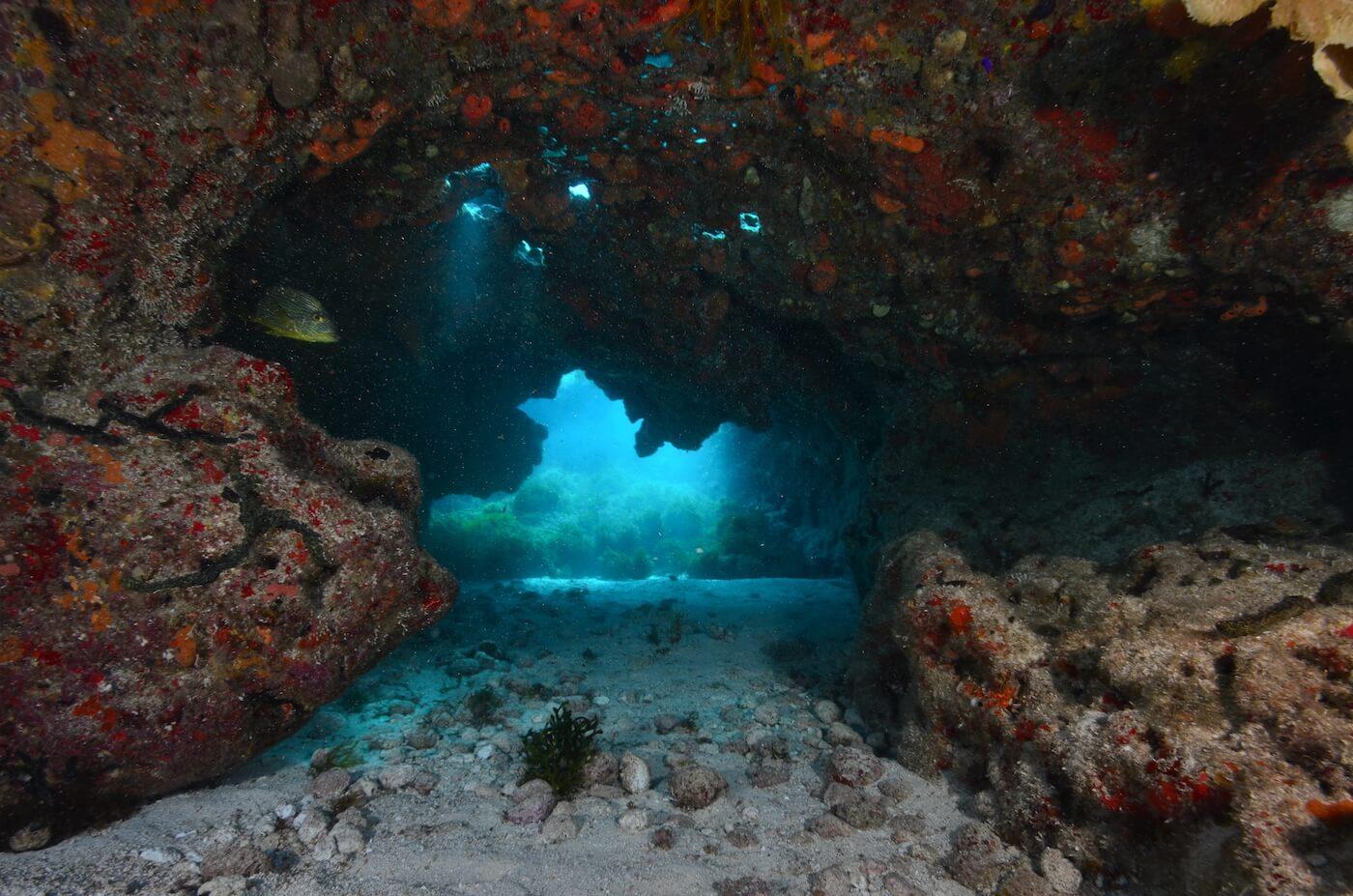 Scuba-Divers_Cancun-Dive-Center-Carbbean-Connection-15