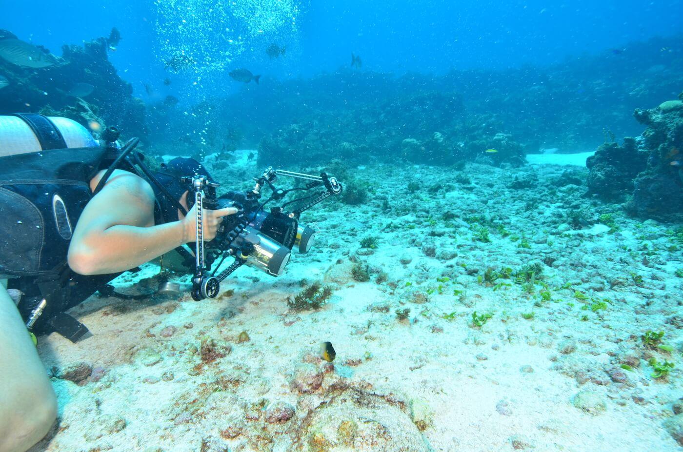 Scuba-Divers_Cancun-Dive-Center-Carbbean-Connection-20