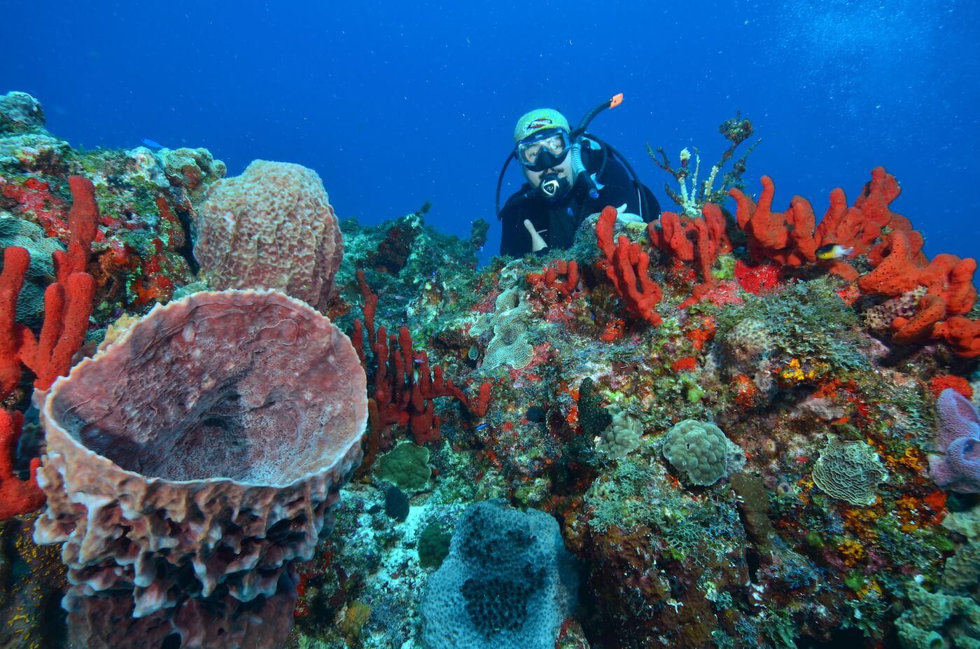 Scuba-Divers_Cancun-Dive-Center-Carbbean-Connection-9