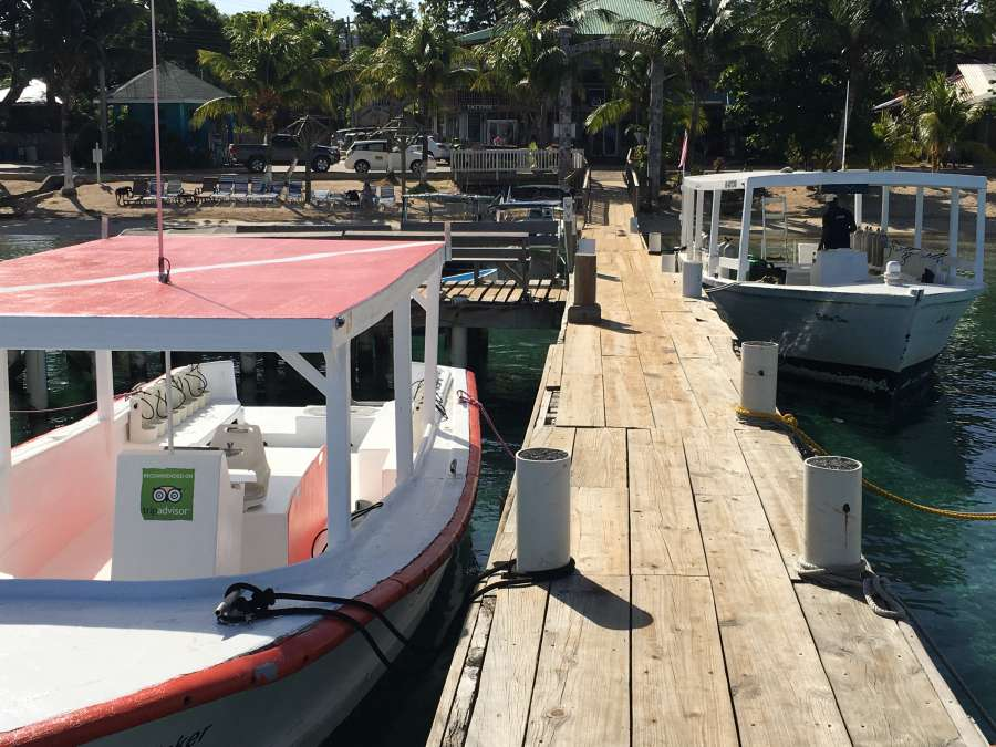 2 large covered scuba dive boats that belong to coconut tree divers