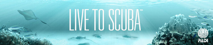 live to scuba dive banner