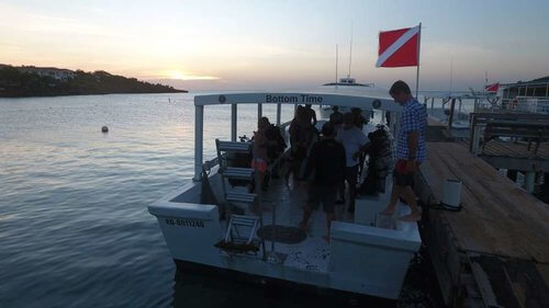 Pro Scuba Diving Courses Roatan Coconut Tree Divers Dive Shop2