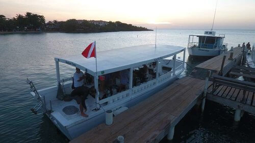 Pro Scuba Diving Courses Roatan Coconut Tree Divers Dive Shop4