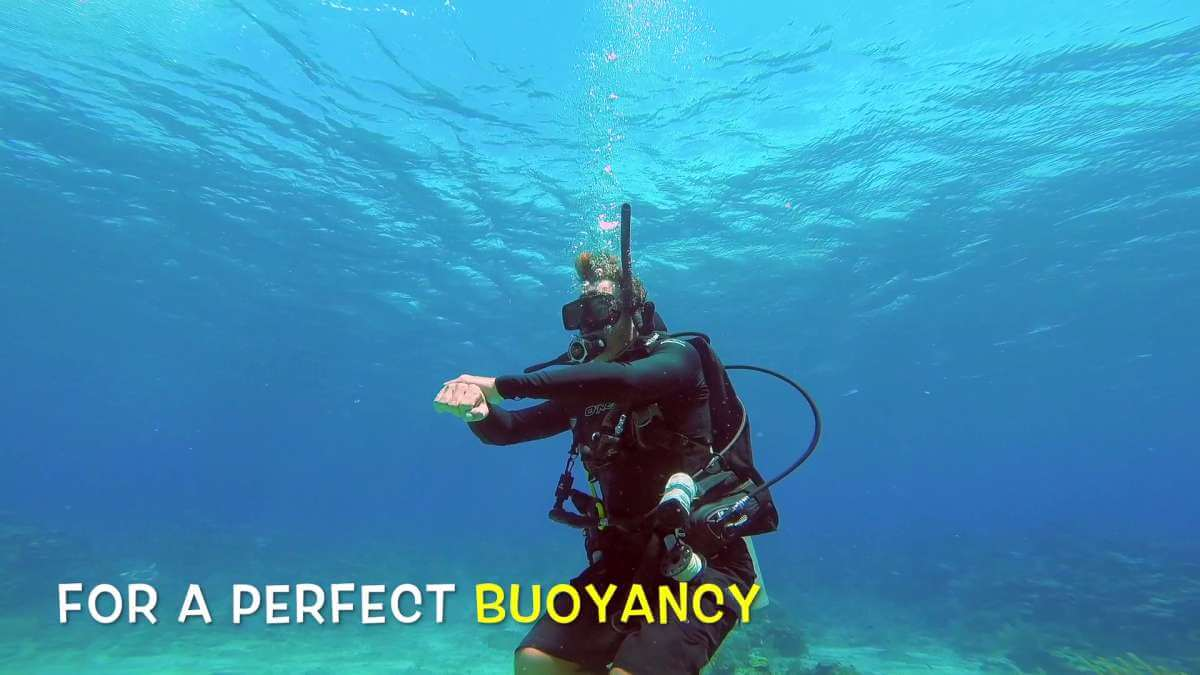 Scuba-Diving-Course-Roatan-Dive-Shop-Coconut-Tree-Divers.jpg3