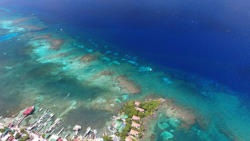 roatan-dive-shop-scuba-diving-sites-7