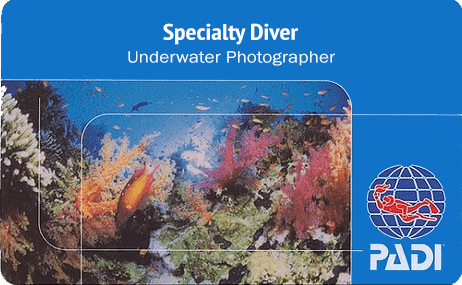 Roatans underwater scuba models here - Coconut Tree Divers