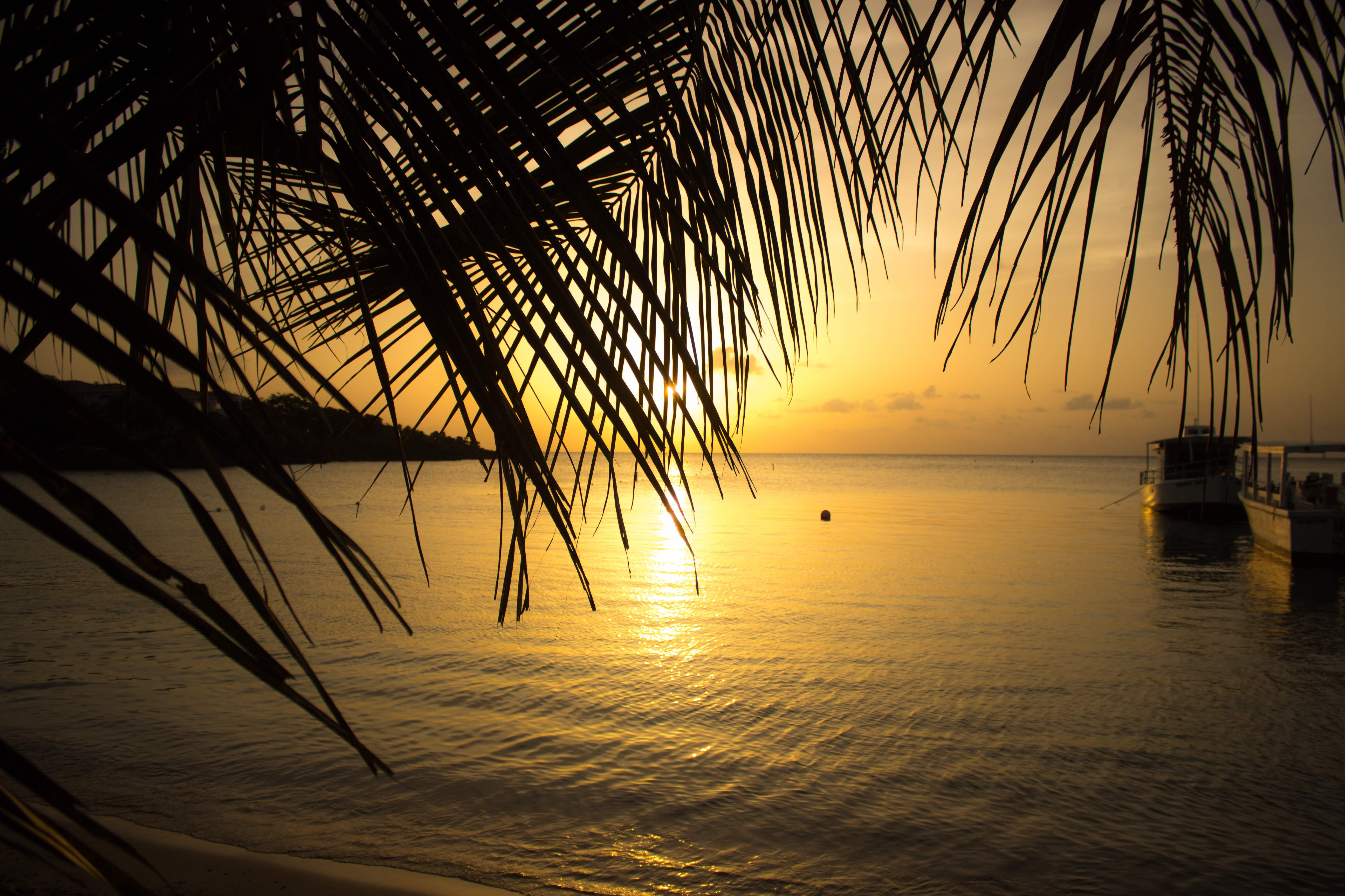 sunset in roatan from coconut tree divers