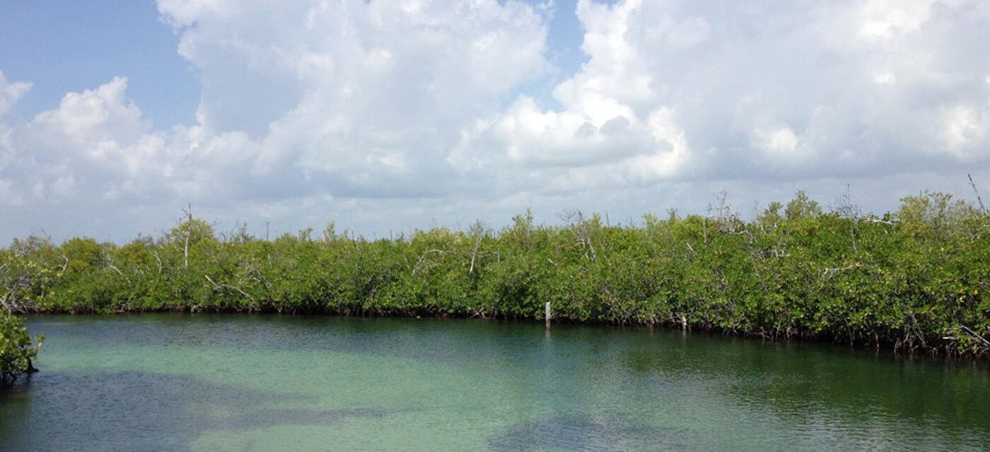 Isla-Contoy-Tours-Snorkel-Beach-All-Inclusive-Cancun-13
