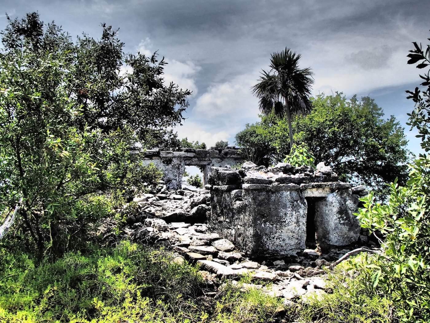 Cozumel SUP Mayan Mangrove Tour-3