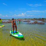 Mayan-Mangrove-SUP-Tour-13