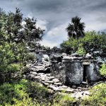 Mayan-Mangrove-SUP-Tour-17