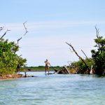 Mayan-Mangrove-SUP-Tour-7