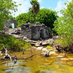 Mayan-Mangrove-SUP-Tour-9