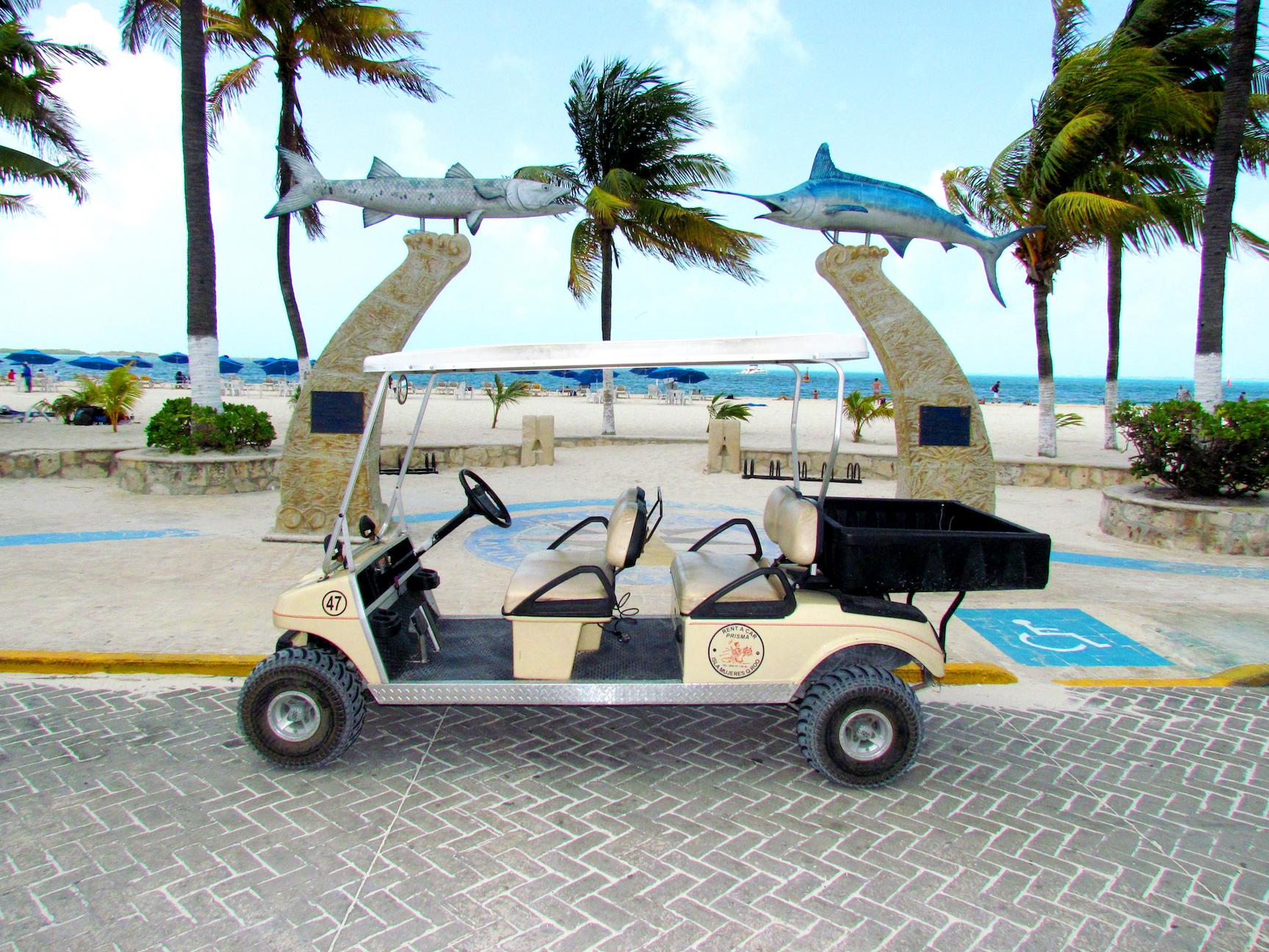 large cart 4