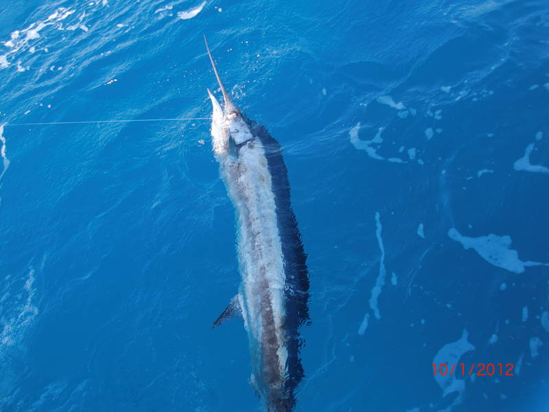 Fishing-Isla-Mujeres-3