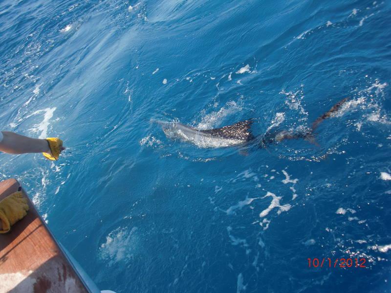 Fishing-Isla-Mujeres-4