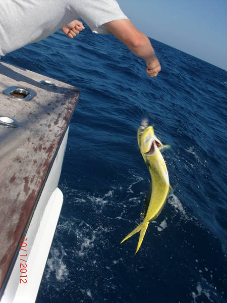 Fishing-Isla-Mujeres-5