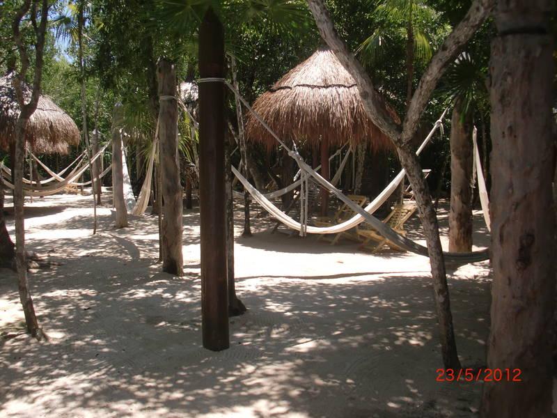 Isla-mujeres-trips-xel-ha-tulum-7